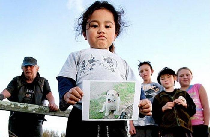 Пес спас детей от питбулей