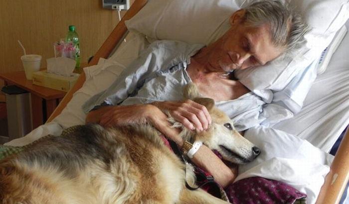 Собака с мужчиной в последние минуты жизни