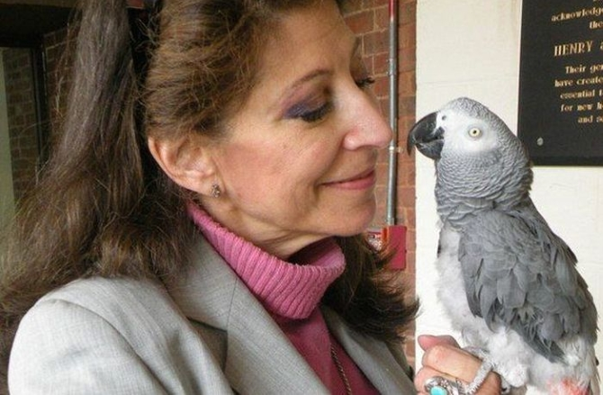 Попугай с хозяйкой