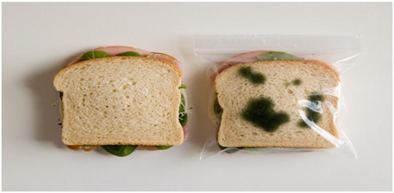 Противоугонная упаковка для бутербродов